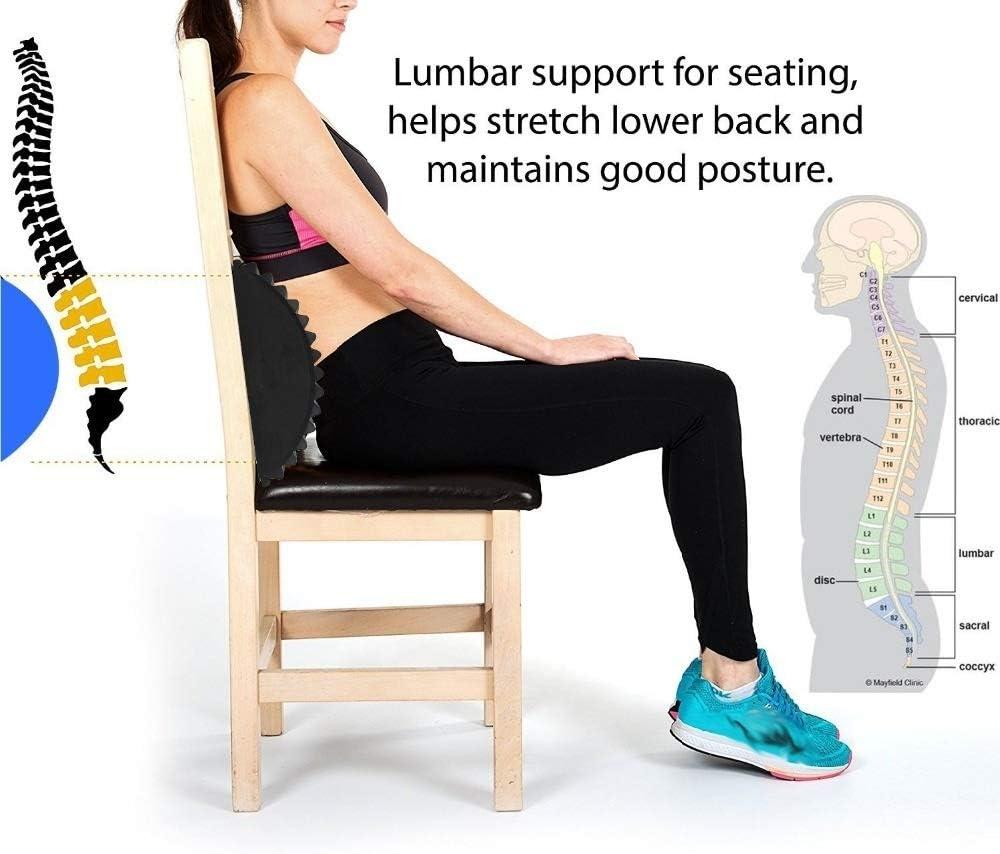 Whz-zyf Procircle Abdominale Mat Noyau Formateur avec acupression Massage for la Colonne vert/ébrale Confortable Sit-ups /Équipement de Remise en Forme Durable Couleur : Blue