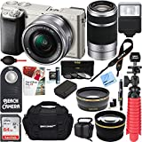 Sony Alpha a6000 24MP Mirrorless Camera 16-50mm & 55-210mm Zoom Lens (Silver) + 64GB Accessory Bundle + Deluxe Gadget Bag + Extra Battery+Wide Angle Lens+2x Telephoto Lens+Flash+Remote+Tripod