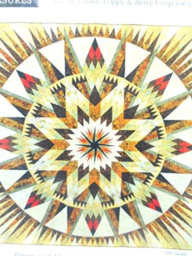 Judy Niemeyer Quilting Amazon Star Quilt Pattern by Niemeyer