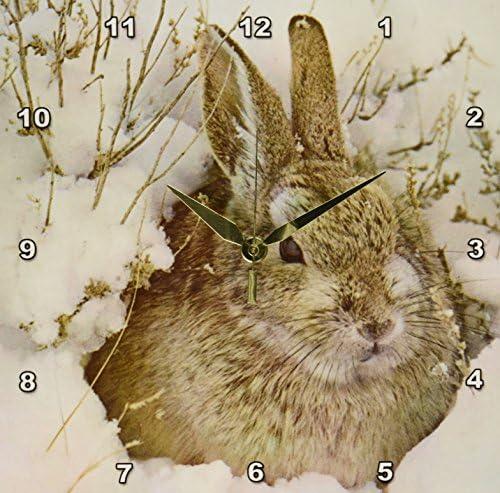3dRose dpp_34742_1 Snow Bunny Wall Clock, 10 by 10-Inch