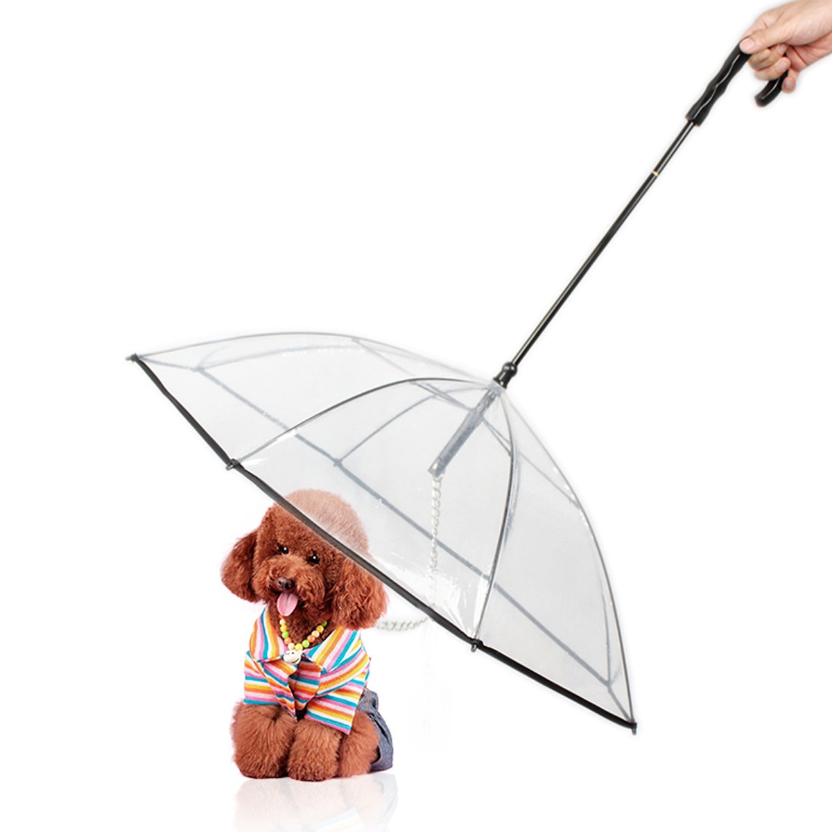 Belovelife Dog's Transparent Folding Pet Umbrella with Leash Protecting From Rain Snow for Puppy