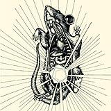 River, Bear Your Bones by CAPRICORNS (2008-07-28)