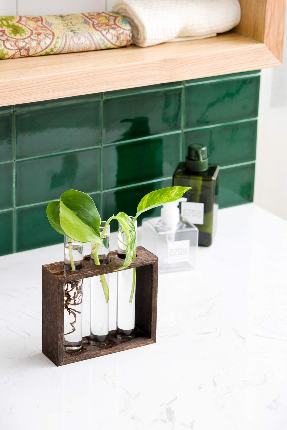 Mkono Wall Hanging Glass Planter Propagation Station Modern Flower Bud Vase in Vintage Wood Stand Rack with 5 Test Tube Tabletop Terrarium for Propagating Hydroponics Plants Home Office Decoration