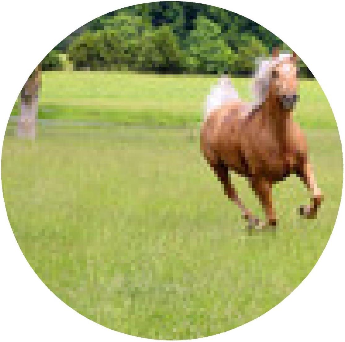 alfombrilla de ratón Palomino Funcionamiento del caballo en ...