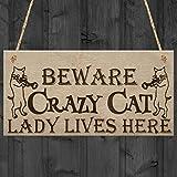Red Ocean Crazy Cat Lady Kitten Cute Funny Gift Idea Animal Lover Hanging Plaque Home Door Sign