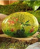 Solar Glass Garden Stone Hummingbird Review and Comparison