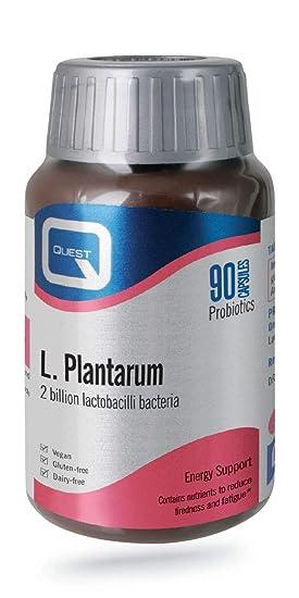 Quest L Plantarum - 90 Capsules: Amazon.es: Salud y cuidado ...