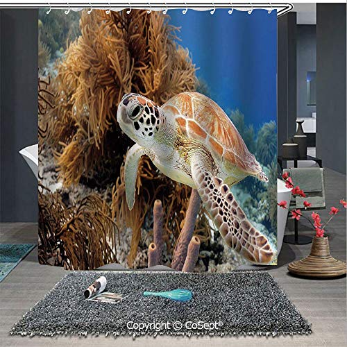 SCOXIXI Water Repellent and Washable Shower Curtain,Coral Reef and Sea Turtle Close Up Photo Bonaire Island Waters Maritime,for Bathroom Showers and Bathtubs(70.86