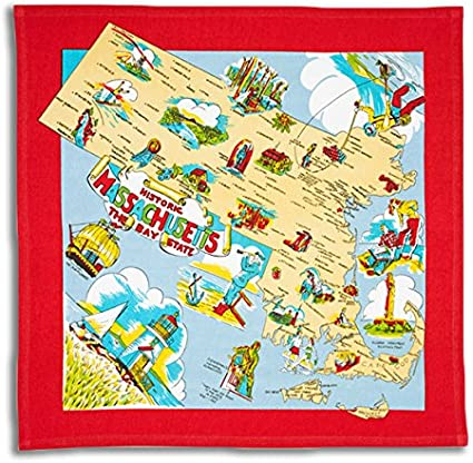 Red and White Kitchen Florida State Souvenir Dish Towel