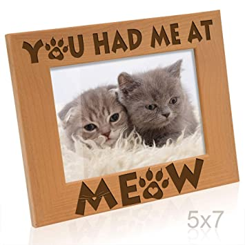 Amazoncom Kate Posh You Had Me At Meow Cat Kitty Paws