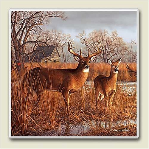Our Side of the River Deer Wildlife Lodge Six Inch Absorbastone Trivet