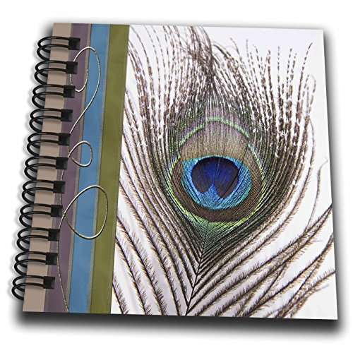 [3dRose Peacock Feather with Gold Trim Look - Mini Notepad, 4 by 4-inch (db_202271_3)] (Peacock Gold Feather Pad)