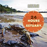 24 Hours in an Estuary (A Day in An Ecosystem)