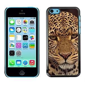 Cubierta protectora del caso de Shell Plástico    iPhone 5C    Leopard Decepcionado Furry Animal salvaje @XPTECH