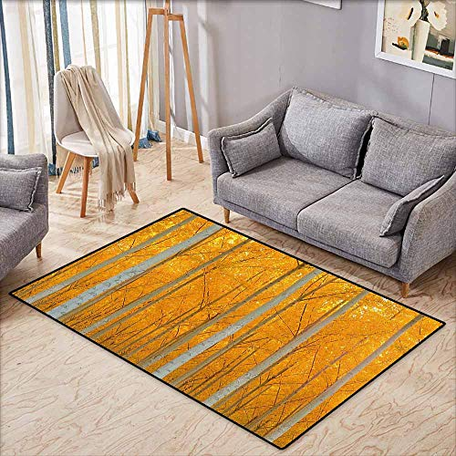 Outdoor Patio Rug,Fall Decorations,Mystical Fall Forest with Pale Leaves Flourishing North West Wood View,Extra Large Rug,5'6