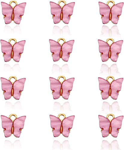 Amazon.com: ZWGYS Butterfly Charms Acrylic Butterfly Pendant For Jewelry Making Pendant For Earrings Bracelets Necklace DIY Making 12 Pcs: Jewelry
