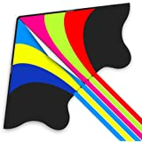 Mint's Colorful Life Delta Kite for Kids & Adults, Extremely Easy to Fly Kite (Flying Rainbow)