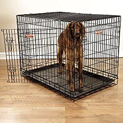 "ProSelect Everlasting Dual-Door Crates for Dogs, Foldable, Durable and Extra-Strong, Versatile and Portable, Constructed of Epoxy-Finished Steel - X-Large, Black 48""L x 30""W x 34""H"