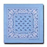Kaiser Collection Double Sided Paisley Bandanas (1 Dozen) - Best Reviews Guide