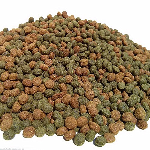 Pellets, INTENSE Growth & Color 3/16'' Floating Koi & Pond Fish Pellets...40-lbs by Aquatic Foods Inc.