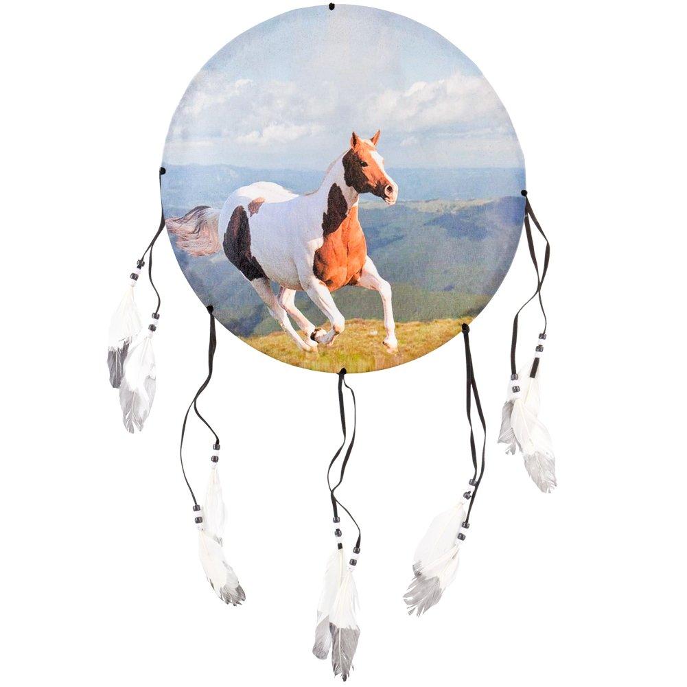 Animal World - Horses Front Profile Dream Catcher - Multi