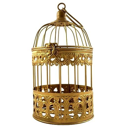 PrimoLiving Deko Metal pájaro Jaula de Oro P 887 Talla M: Amazon ...