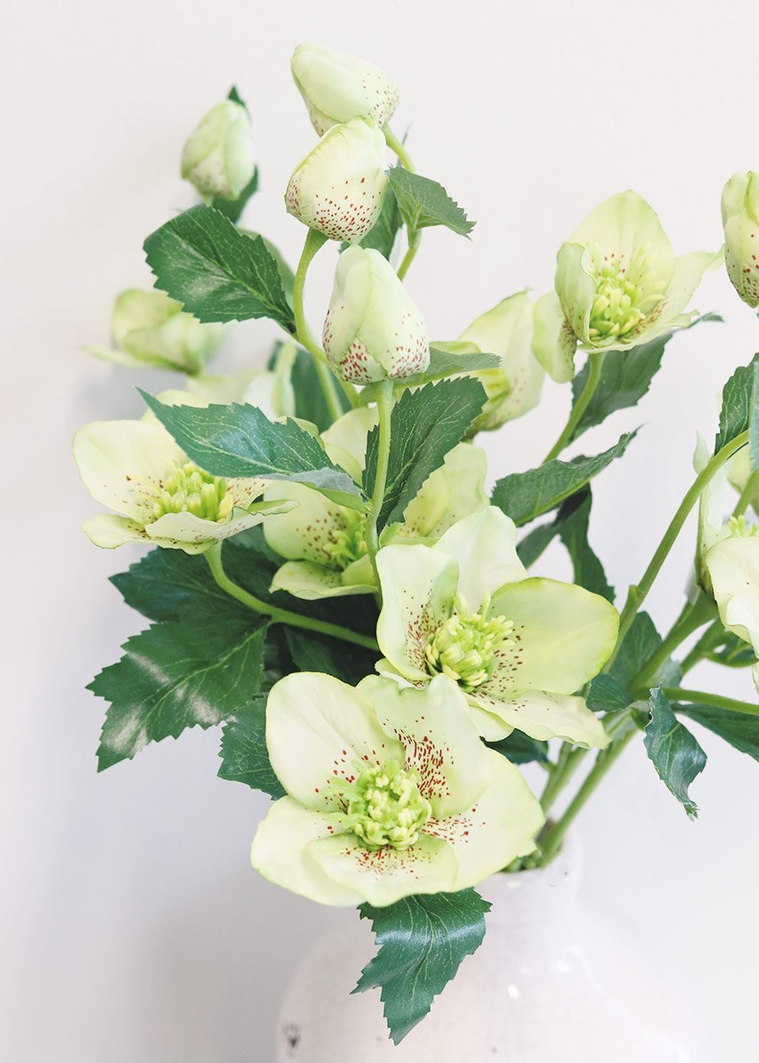 Amazon Allstate Floral Craft Helleborus Artificial Flowers In