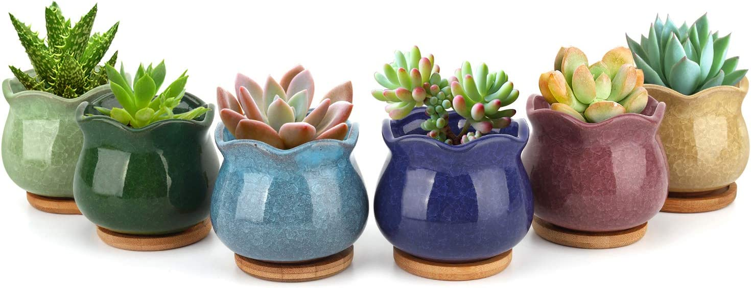 Luxspire Succulent Pots Set of 6, 3.1 Inch Mini Glazed Ceramic Succulent Flower Plant Cactus Ice Crack Pot Planter Container with Hole & Tray for Garden Home Office Tablet Desk Deal Gifts - Colorful