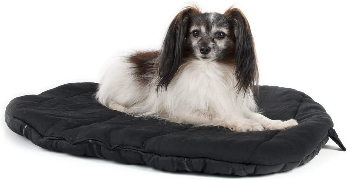 Back on Track 39-Inch by 47-Inch Therapeutic Dog Bed Mattress, Large