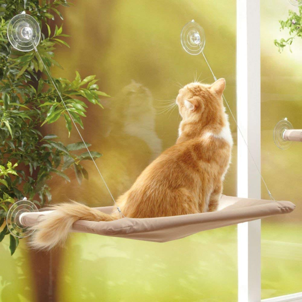 AOI Window mounted cat basking hammock for cat perch, Suction Cup Pet Hanging Bed Comfortable Durable Solid Save Space ,The perfect pet bed(55x32cm)