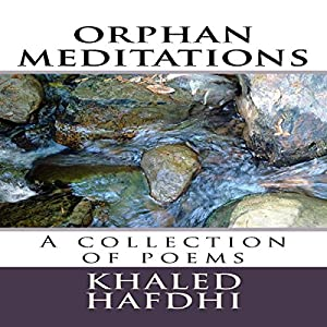 Orphan Meditations Audiobook