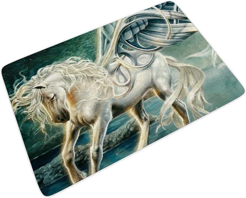 RQPPY - Felpudo rectangular para interior y exterior, diseño de Pegasus, caballo, alas, mito, para casa, baño, ducha, dormitorio, 45 x 75 cm, Blanco, 16x24 inch