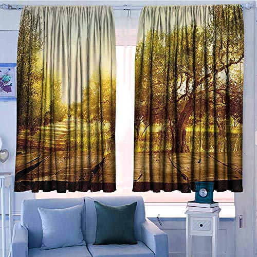 Window Blackout Curtains 42