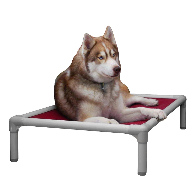 Kuranda almendra PVC chewproof perro cama - grande (40 x 25) - Cordura - Caqui por Kuranda: Amazon.es: Productos para mascotas