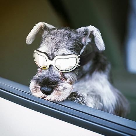 Gafas de Sol para Perro, Anteojos para Perros y Gatos con Protección UV, Gafas