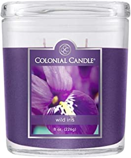 product image for Colonial Candle Wild Iris Jar Candle, 8 oz, Purple