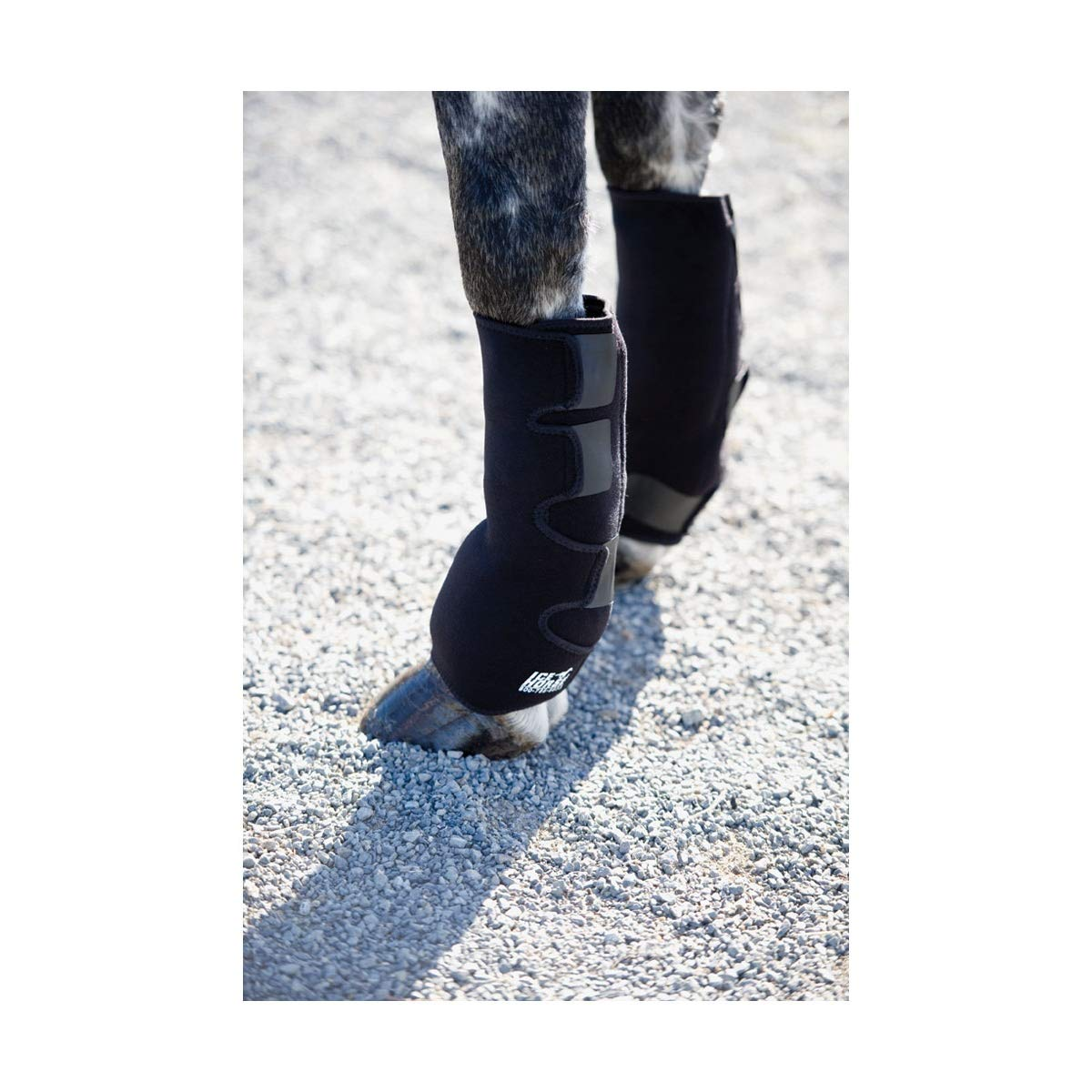 Black One SizeIceHorse Evendura Touch Fastening Horse Wraps (Pack Of 2)