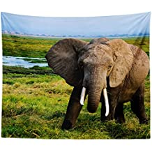 Westlake Art Wall Hanging Tapestry - Elephant Elephants - Photography Home Decor Living Room - 68x80in (x8z-61f-32f)