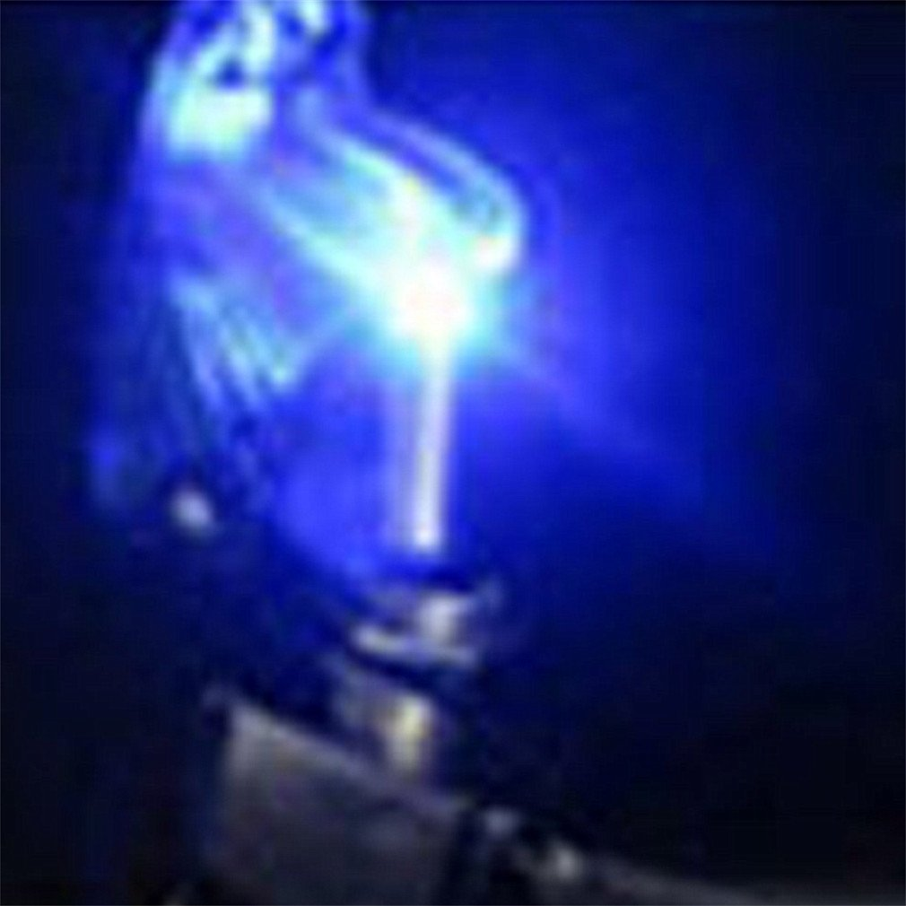 Qiorange 5x DC 12V 20A Racing Car Vehicle Blue LED Lights Cover Toggle Switches blue