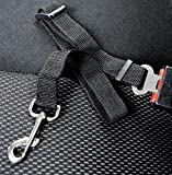 Lesypet Adjustable Pet Cat Dog Car Vehicle Safety Seat Belt Harness Lead - Black
