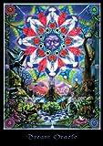 NMR/Aquarius Dream Oracle Poster