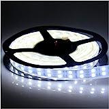 LEDENET 5M Double Row 600LEDs SMD 5050 LED Flexible Strip Lighting DC 12V Cold Cool White Waterproof Outdoor Use