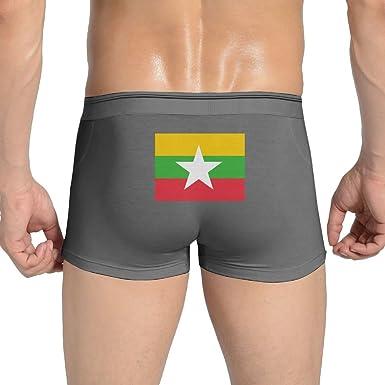Flag Of Myanmar Cool Mens Boxer Briefs Underwear Low Waist Panties For Boy Large,Black