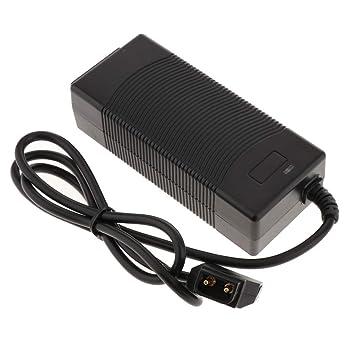 Shiwaki 16.8V 3A D-Tap Cargador de Cámara Adaptador de ...