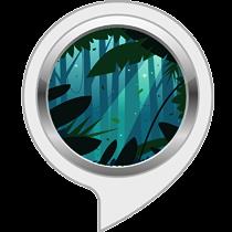 Entspannungsgeräusche: Dschungelnacht