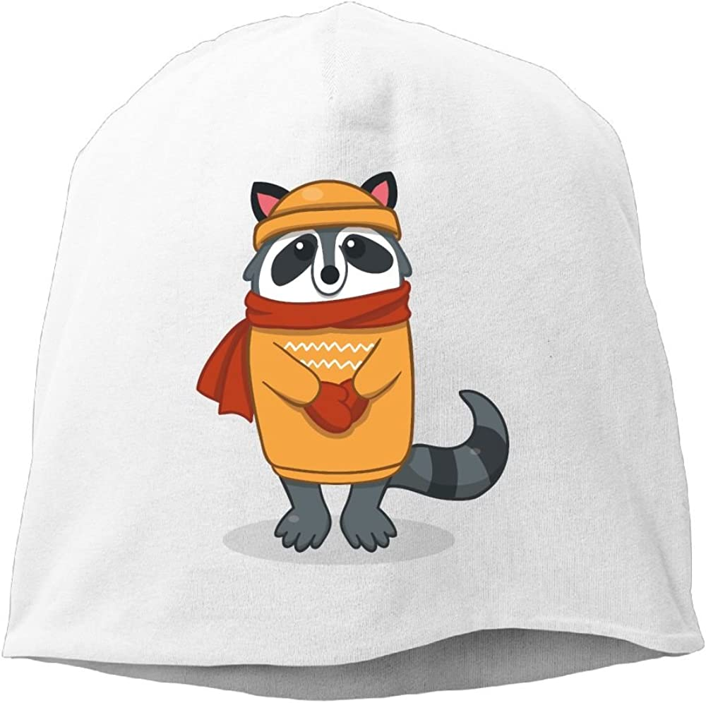 Janeither Headscarf Gentle Raccoon Hip-Hop Knitted Hat for Mens Womens Fashion Beanie Cap
