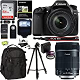 Canon EOS 80D Digital SLR Camera Kit, EF-S 18-135mm f/3.5-5.6 Image Stabilization USM Lens, Sandisk 64GB Memory Card, Flash, Filters and Accessory Bundle