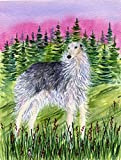 Caroline's Treasures SS8227GF Borzoi Flag, Small, Multicolor