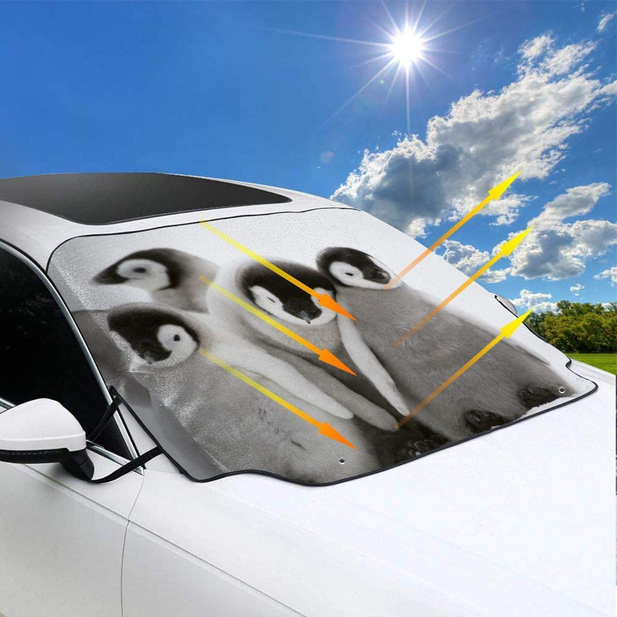 gklglg Many Penguins Cute Car Windwhield Sun Shades Universal Fit 130 70cm//51 28 Window Keep Your Vehicle Cool Visor for Car Truck SUV Sunshade Cover