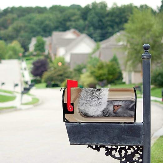Gato lindo en caja de cartón Tamaño estándar Original Correo magnético Cubierta Carta Buzón 21 x 18 pulgadas Mailwraps Cubiertas de buzones Cubiertas de correo Cubiertas de buzones de vacaciones: Amazon.es: Jardín